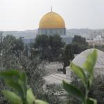 autumn & JERUSALEM 042